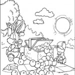 Tiny Toons coloring pages 3
