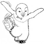 Happy Feet coloringpages -