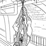 Spiderman coloringpages -